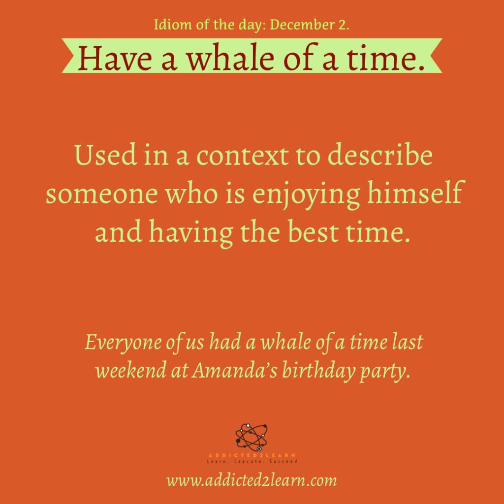 Idioms and Phrases December Series:  Have a whale of a time.