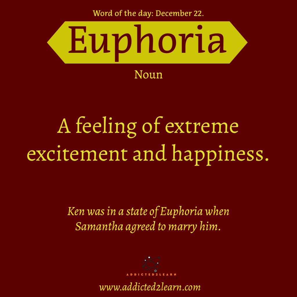 Word of the day  December Series:  Euphoria: A feeling of extreme excitement and happiness.