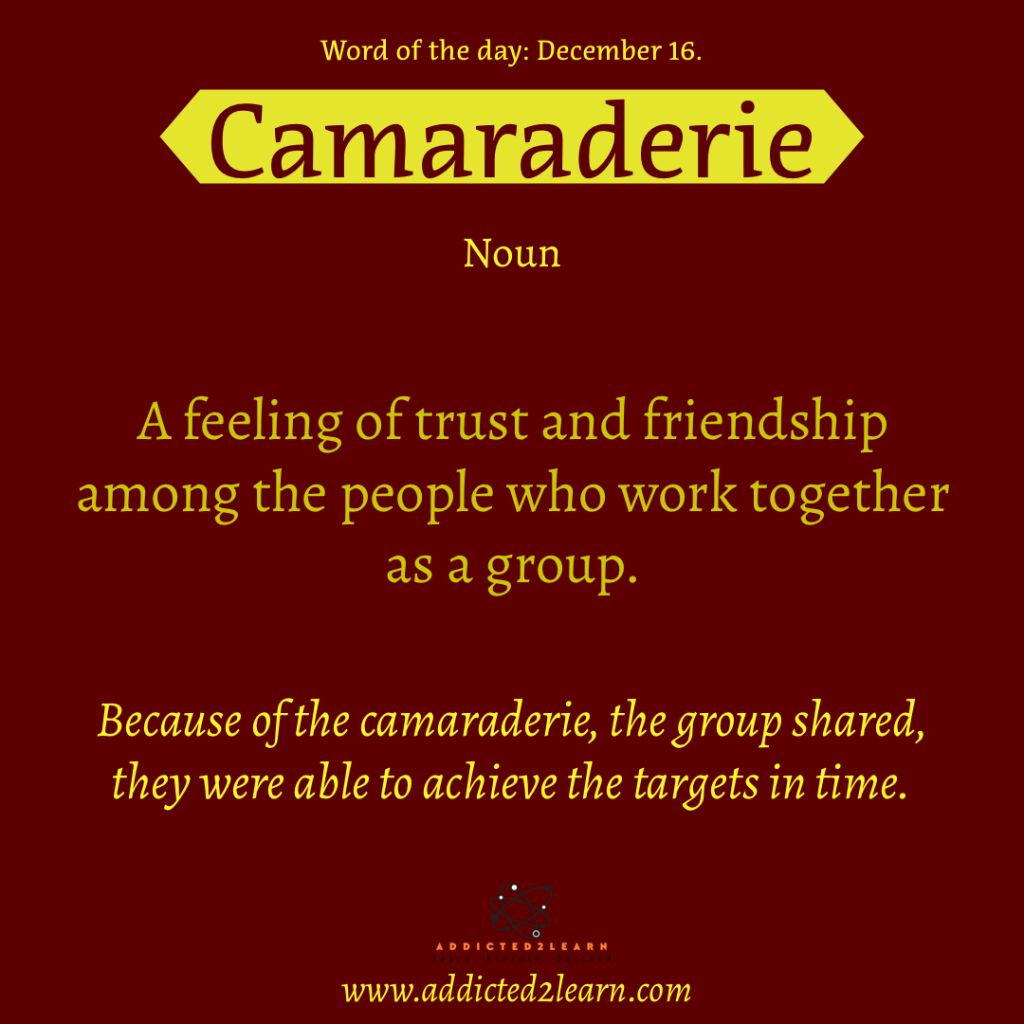 Word of the day December Series: Camaraderie: A feeling of trust and friendship among the people who work together as a group.
