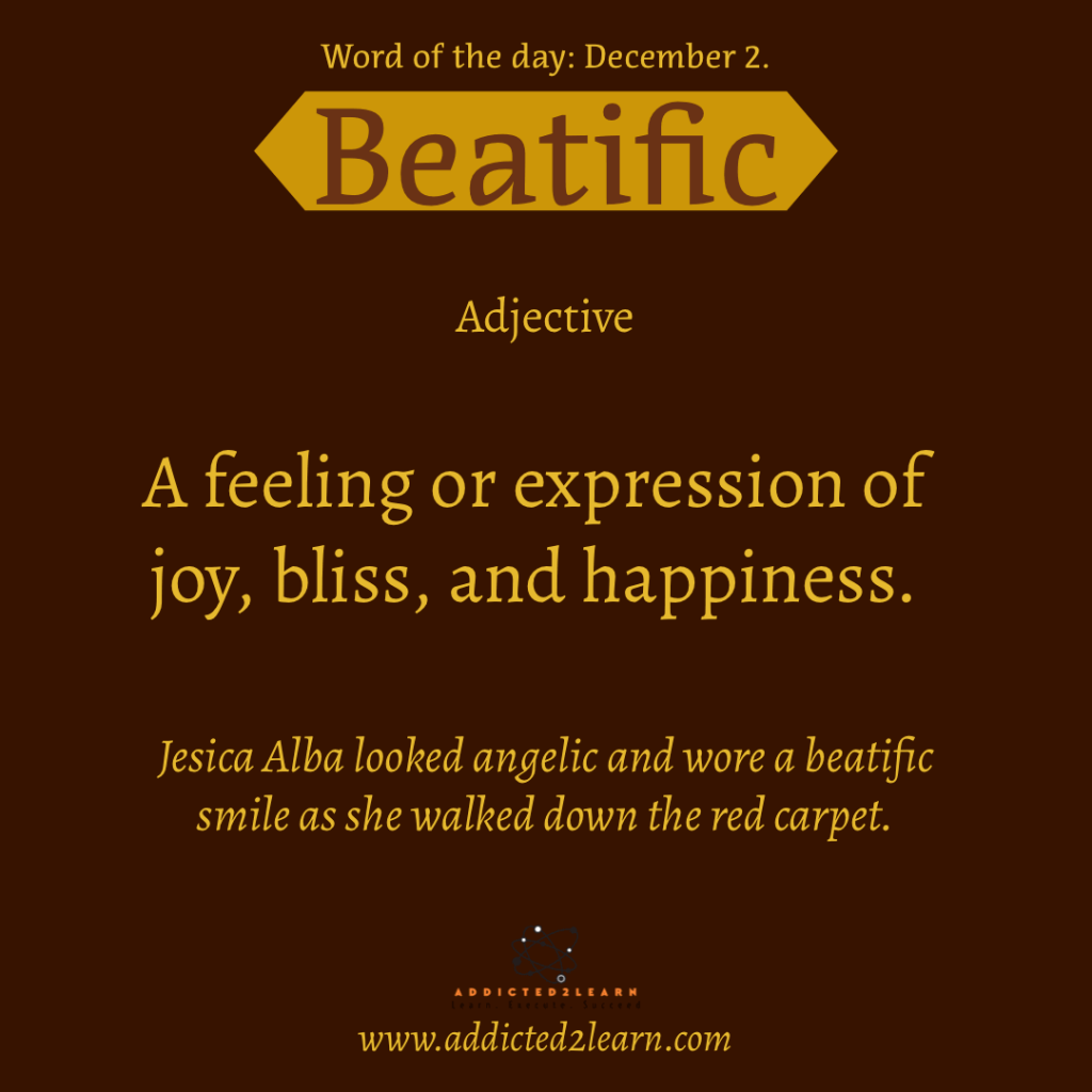 Word of the day December Series:  Beatific:  A feeling or expression of joy, bliss, and happiness.