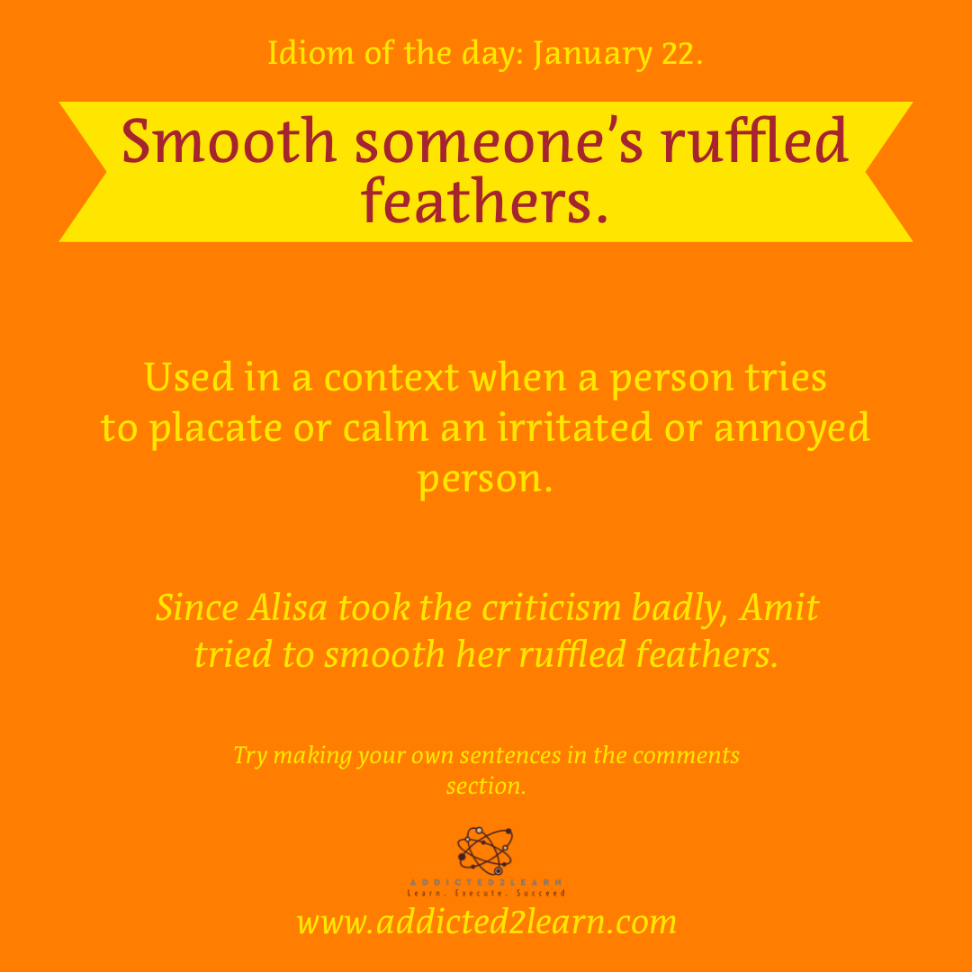 Idiom of the day: Smooth someone's ruffled feathers.