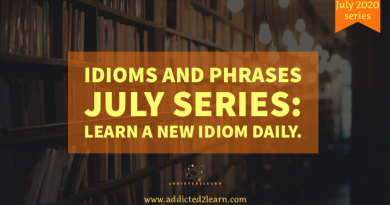 Idiom and Phrases July Series